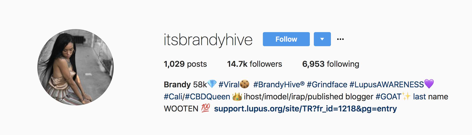 Brandy Hive Instagram