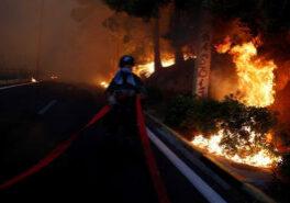 9iiim88c_greek-wildfire-reuters_625x300_24_July_18